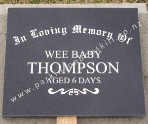 61147_Thompson